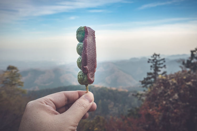 Close-up of hand holding food against mountains