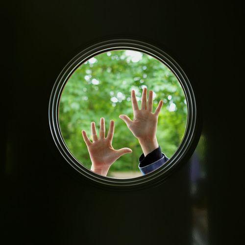 Hands Hands Up Hands In Frame Market Reviewers' Top Picks