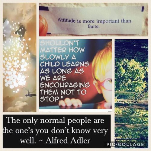 Can anyone honestly define normal l? Text Happiness Advocate Information Sign Communication Fortune Cookie Simple Things In Life Words Of Wisdom... Quotes Quoteoftheday Child Rethink No Judgement Wisdom Nojudgement Inspired Inspirational Inspiring Insperation!