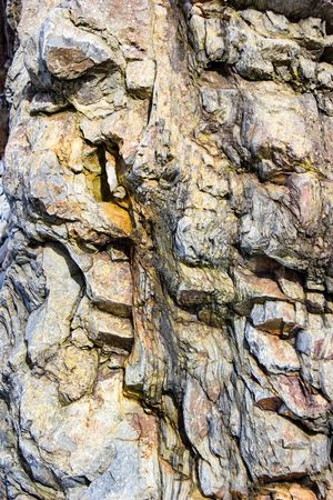 Full Frame Textured  Backgrounds Close-up Cracked No People Rough Nature Tree Trunk Outdoors Day Beauty In Nature Rockface EyeEm Nature Lover