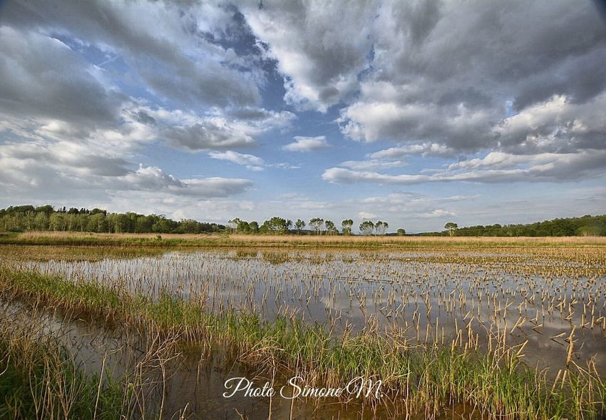 Cloud - Sky Sky Landscape Environment Plant Agriculture Water Nature Rural Scene Scenics - Nature Beauty In Nature