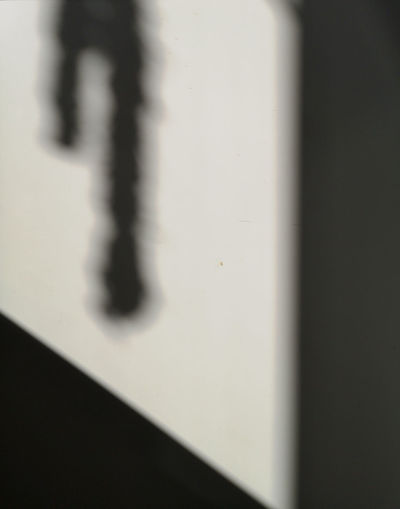Shadows Shadow