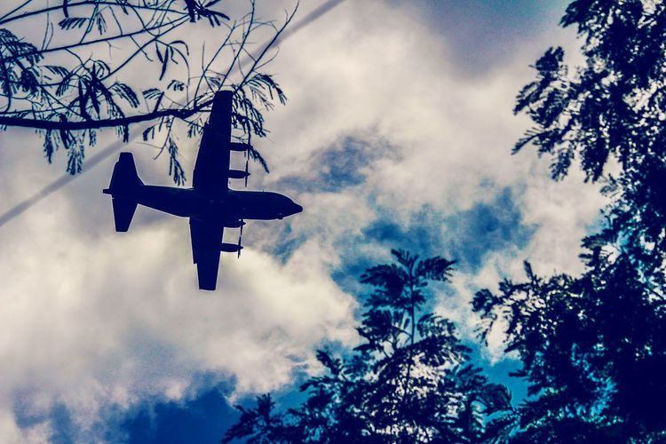 can we pretend that airplanes in the night skies are like shooting stars... EyeEm Best Shots EyeEm Nature Lover Eyemphotography EyeEm Gallery Bangladesh Nature Photography Photooftheday Plane Sky Fantasy Dark Artistic Tree Plant Nature Low Angle View Flying Transportation Airplane Day