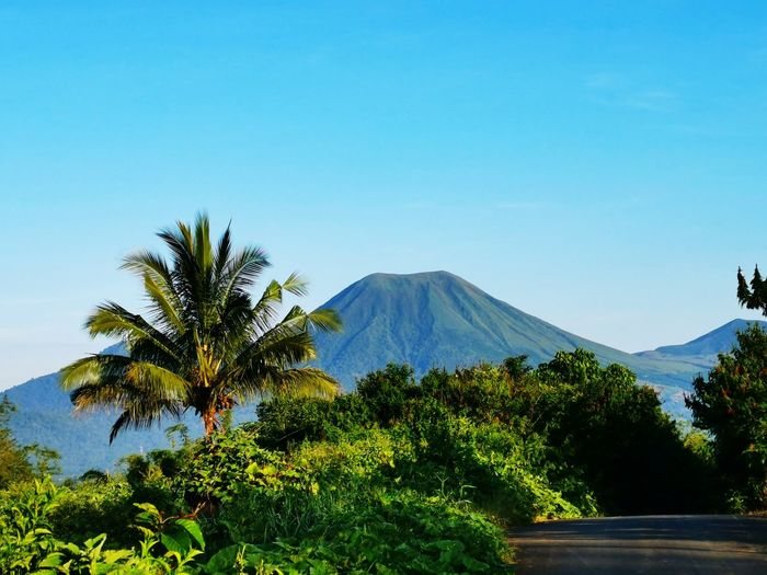 Mountain's Road Tree Mountain Clear Sky Blue Volcano Sky Volcanic Crater Active Volcano