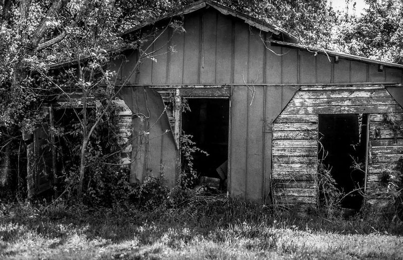 Abandoned Architecture Building Building Exterior Built Structure Damaged Day Decline Deterioration Film Photography Filmisnotdead House Nature No People Obsolete Old Outdoors Plant Ruined Run-down Tree Weathered Window Wood - Material