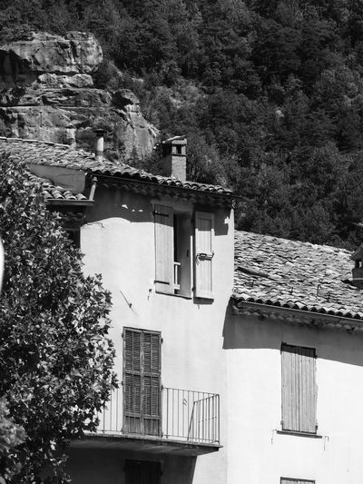 Architecture Blackandwhite Branch Building Exterior Built Structure Chimney Day Exterior Green Color High Section House No People Outdoors Provence Residential  Residential Building Residential Structure Tree Window