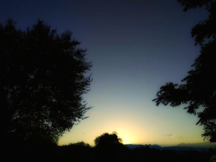 """""""Morning Glow"""""""