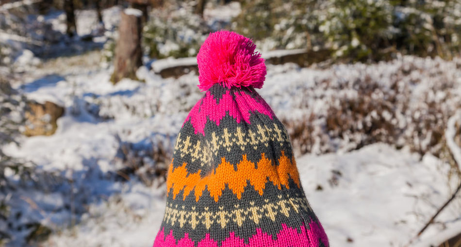 Close-up of hat standing against snow covered trees
