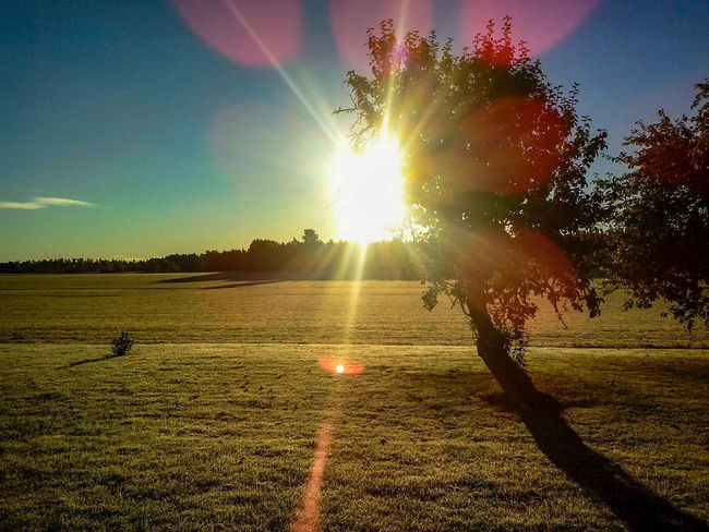 Backlit Beauty In Nature Bright Clear Sky Glitch Landscape_photography Lens Flares Light And Shadow No People Outdoors Sunlight Swedish Landscape Tranquil Scene