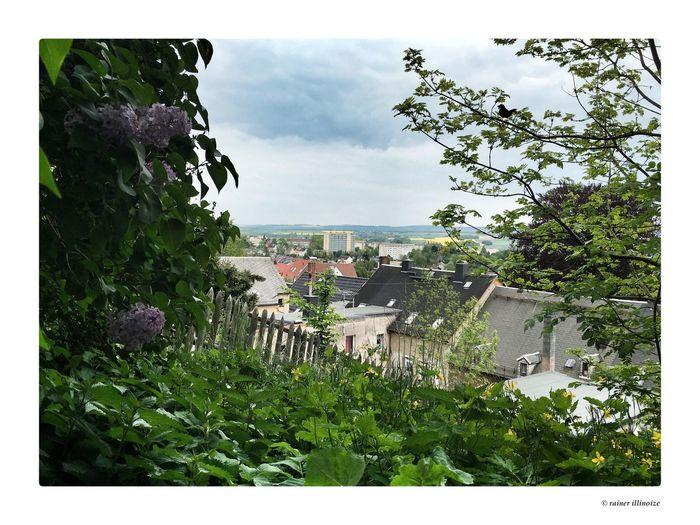 Hometown Homeland Hello World Relaxing Taking Photos Enjoying Life GERMANY🇩🇪DEUTSCHERLAND@ HohensteinErnstthal May
