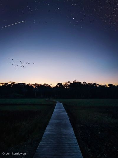 not only take a picture,but freeze a moment's Sunset Landscape Astronomy Star - Space Space Tree Constellation Astrology Sign Milky Way Star Trail Calm First Eyeem Photo