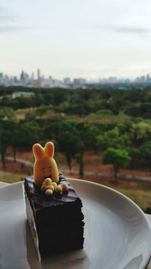 Close-Up Of Rabbit Icing On Cake Slice Served In Plate