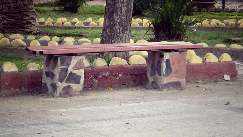 Bank Day Outdoors Park - Man Made Space Place To Relax, Place To Have A Good Time, Place To Met People Place To Relax❤ Stone Material Tree