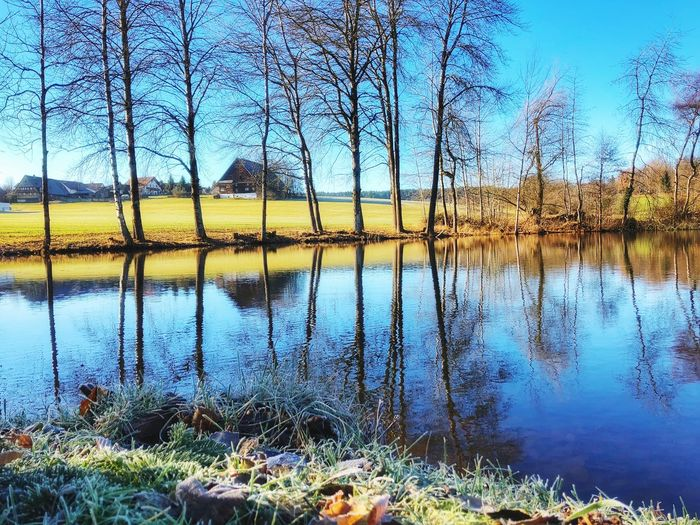 Tonishof Tonishof Black Forest Königsfeld Reflection Water Lake Nature Tranquility Tranquil Scene Beauty In Nature Standing Water Outdoors Bare Tree Sky No People