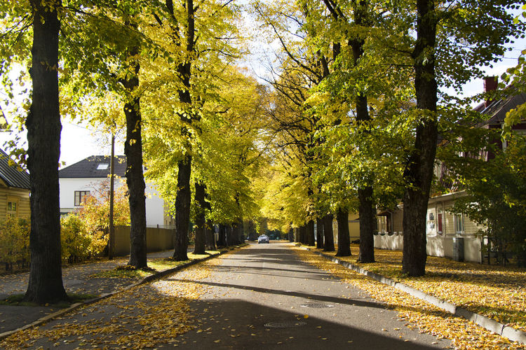Parnu is a resort city in southwestern estonia. old village houses and street.