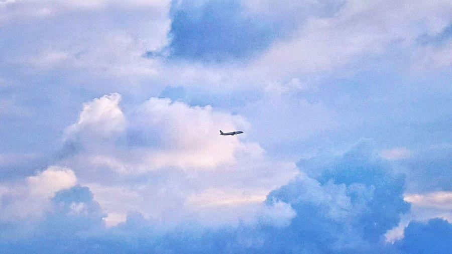 嚮 往 ✈ Flying