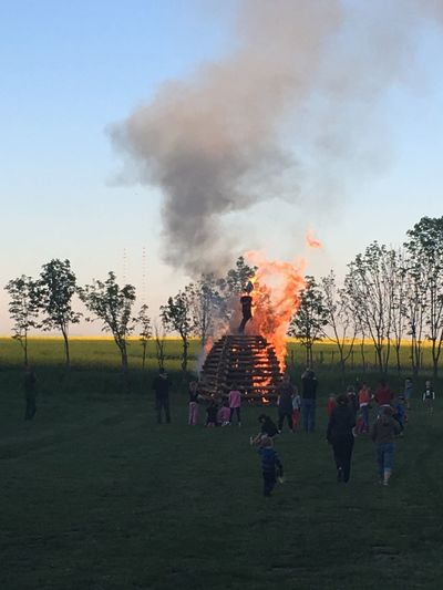 Burning Of Witches Tree Real People Plant Crowd Large Group Of People Group Of People Leisure Activity