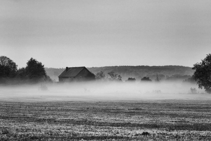 The fog is spreading out over the fields - Agriculture Beauty In Nature Black & White Black And White Blackandwhite Cultivated Land Exceptional Photographs EyeEm Best Shots - Black + White Field Fieldscape Foggy Foggy Landscape Foggy Morning Hello World Mist Misty Morning Nature Non-urban Scene Remote Rural Scene Scenics The Week Of Eyeem Tranquil Scene Tranquility Monochrome Photography
