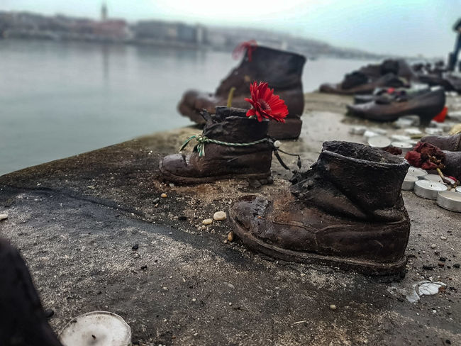 Art Arts Culture And Entertainment Art is Everywhere Urban Historic History Memorial Memory Danube River #hungary #travelphotography #travel #budapest Sadness Tragedy Shoes No People Water Beach Nature Day Flower Outdoors Close-up