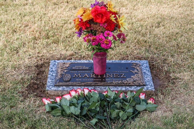 Plant Flower Flowering Plant Grass Nature Communication Text Freshness No People Flower Arrangement Beauty In Nature Mail Correspondence Western Script Day Letter Field Tombstone Bouquet Outdoors Flower Head Message