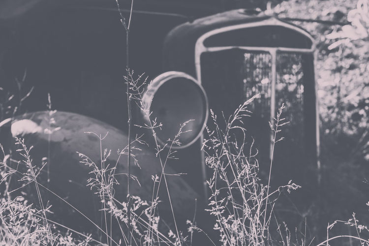 Abandoned Vintage Car On Field
