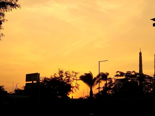 EyeEm Ready   EyeEm Selects AI Now! Sunrise Orange Color Mousque Palm Tree Sunset Silhouette No People Tree Sky Tranquility Outdoors Nature