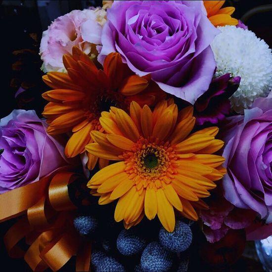 あけましておめでとうございます! Flower Beauty In Nature Point Of View 色のある世界