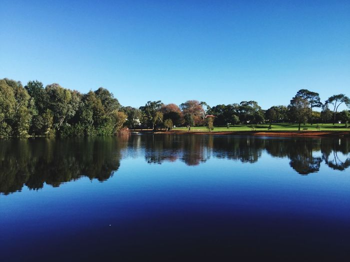EyeEmNewHere Park Australia Fresh Healthy Lifestyle Tree Water Lake Blue Autumn Clear Sky Reflection Sky Reflection Lake Majestic