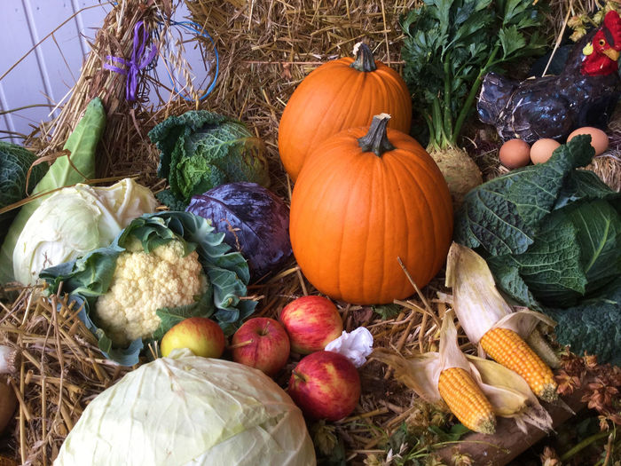 Day Food Gourd Holiday - Event Horizontal Nature No People Outdoors Pumpkin Variation Vegetable