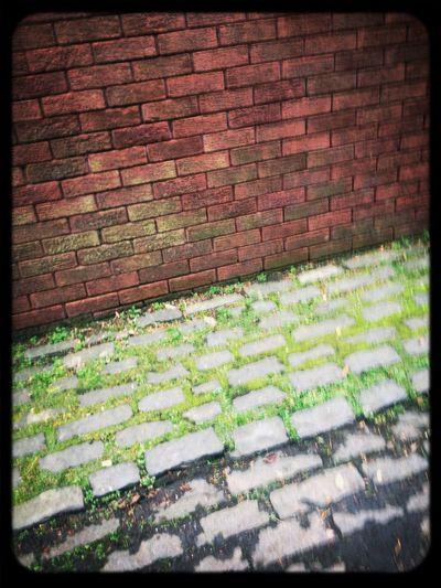 Stones Walking Walking Around