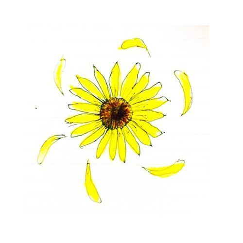 Flower 向日葵 ひまわり 絵 おえかき