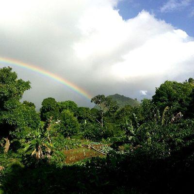 Rainbow Outdoors Ourbestshots Best_nature_photo_ever Bestofmycity_2see Ourbestshots All_shots Grenada WestIndies Skyshooters Skysnappers