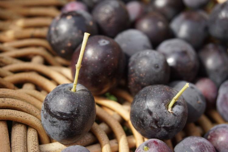 Close-up of blackberries in basket