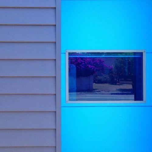 Fltrlive AMPt_community Abstract NEM Landscapes #procamera7 #snapseed