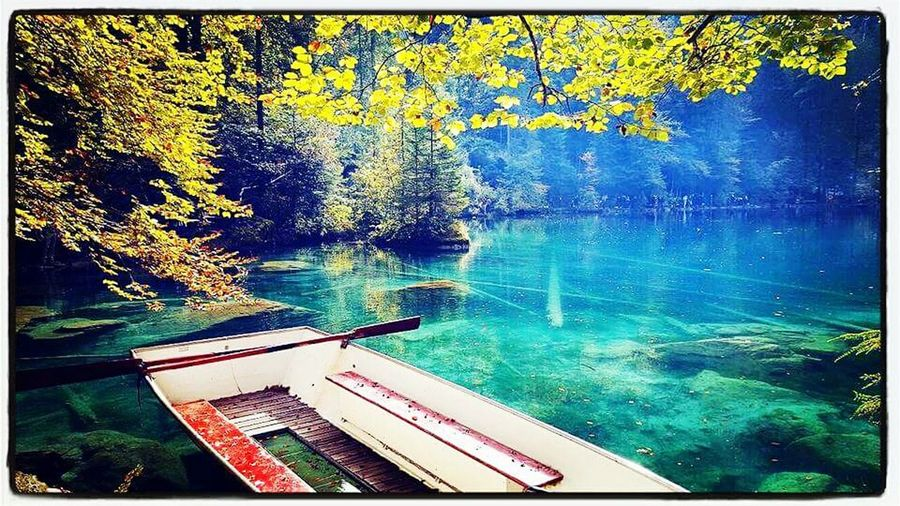 Water Day No People Outdoors Nature Travel Photography Travel Enjoying Life Picture Passion For Nature Passionphotography Photographer Photographing Beautiful Switzerland Beauty In Nature Blue Blausee Lake Lacbleu Suissephotografie Swimming Pool