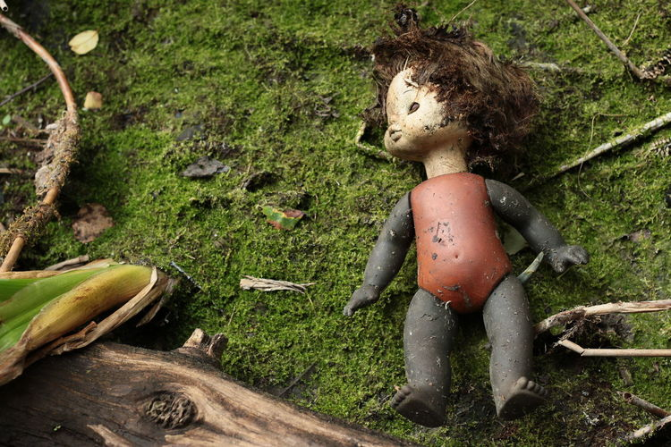 High angle view of abandoned doll on moss covered field