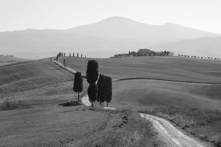 Pienza Pienza (toscana) Paesaggio Crete Senesi Siena Val D'orcia Cypresses Landscape Mountain Environment Sky Scenics - Nature Field Land Tranquil Scene Tranquility Nature Beauty In Nature Rural Scene Plant Agriculture Day Mountain Range Non-urban Scene Farm No People Outdoors