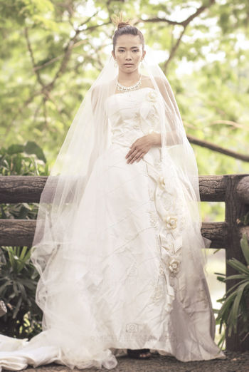 Bride Nature Outdoors Portraits Tree Wedding Wedding Dress Young Adult Young Women