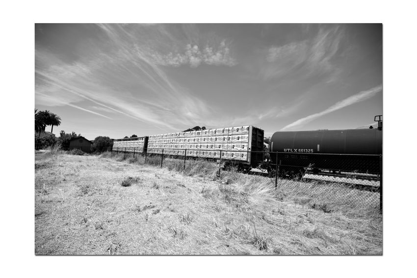 Freight Train 8 Union Pacific Railroad Passes Through Niles Canyon Freight Train Intermodal Freight Transport Tanker Boxcars Railroad Photography Train_Photography Rolling Stock Cargo Train Rail Freight Transport 2nd Largest Freight Railroad In North America Monochrome Monochrome_Photography Black & White Black & White Photography Black And White Black And White Collection  Sky And Clouds Landscape Eastbay Hills Dry Grasses Fence Building Trees Landscape_Collection Railroad Tracks Landscape_photography Countryside Train - Vehicle