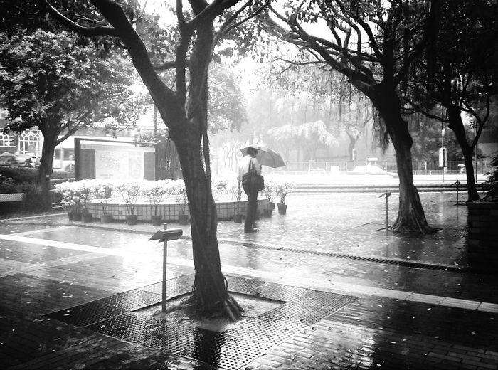 Streetphotography Divestreetphotography Streetphoto_bw Taking Photos when the rain comes