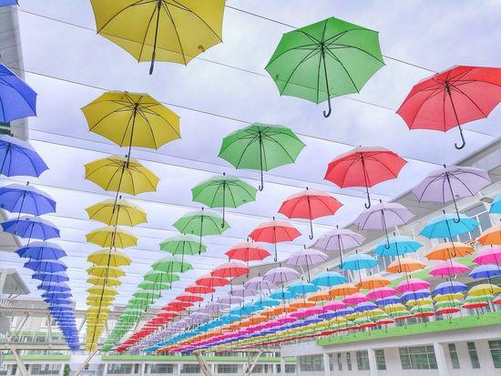 Multi Colored Pattern No People Day Indoors  Colorful Umbrella Umbrella Street Umbrella Art Umbrella Sky Oo EyeEm Diversity Art Is Everywhere BYOPaper!