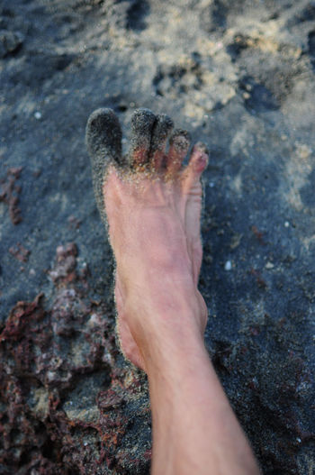 Close-up of human hand touching land
