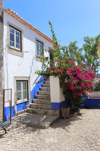 Architecture Blue Building Exterior Built Structure Day Flower House Nature No People Outdoors Portugal Residential Building Sky Steps Sunlight Turistic Places Óbidos