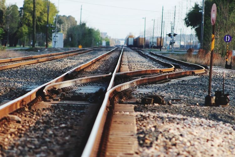 Directional options 😃 Canonphotography Popular Photos EyeEm Nature Lover My Original Photo Tree Railroad Tie Railroad Track Public Transportation Rail Transportation Railroad Station Platform Train - Vehicle Sky Train Track Railroad Railway Track Track Parallel Gravel Long