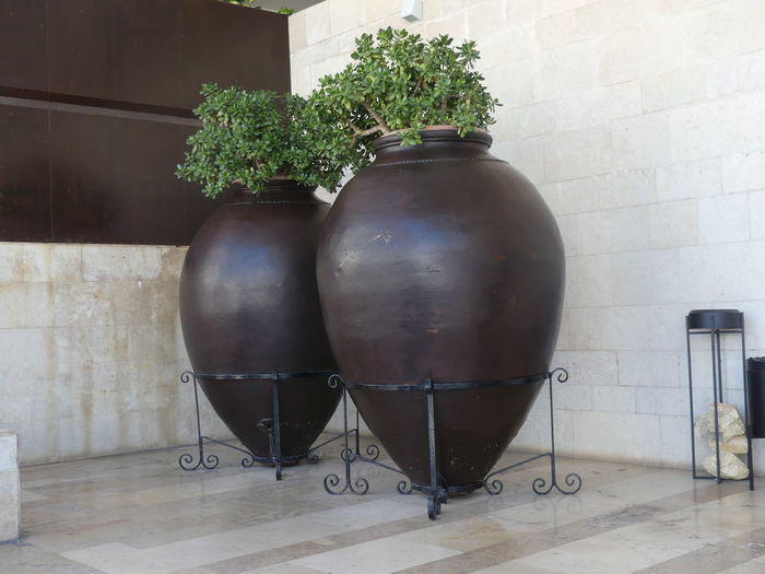 Olive Jars used