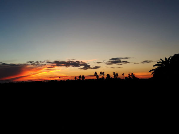 EyeEmNewHere Beauty In Nature Cloud - Sky Environment Landscape Nature Outdoors Scenics - Nature Silhouette Sky Sunrise Tranquil Scene Tree
