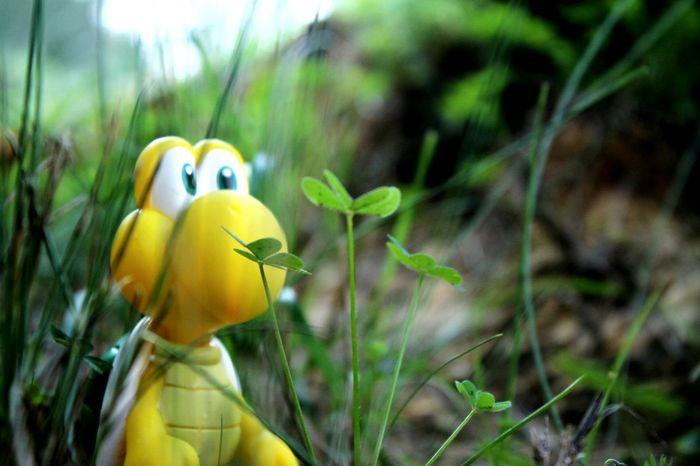 Koopa Troopa Landscape Nature Forest