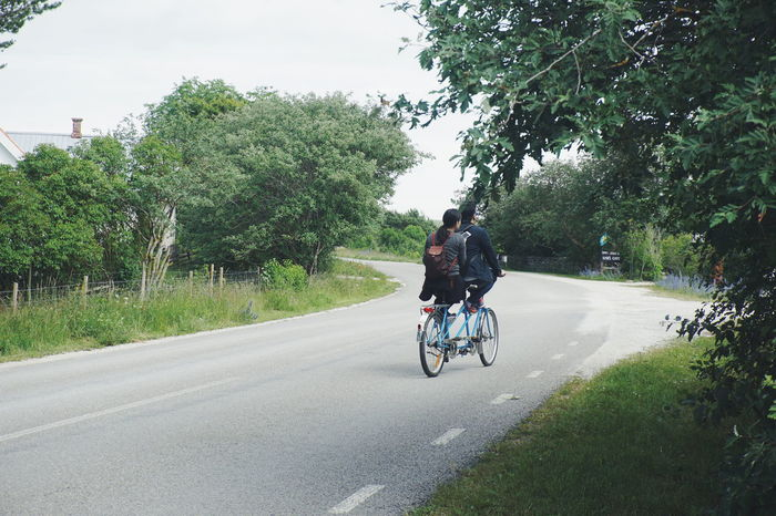 Adventure Bicycle Bike Biking Country Country Life Countryside Couple Day Men Nature Outdoors People Real People Ride Riding Road Sky Tandem Bike Tandembicycle Together Togetherness Transportation Tree Two People Let's Go. Together.