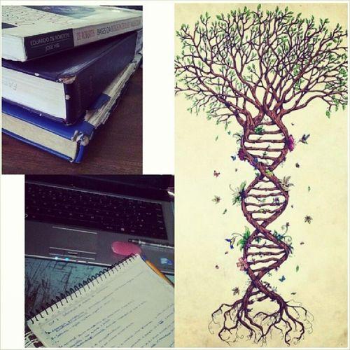 Meu carnaval a base de anatomia, biologia celular e embriologia, mesmo assim eu amo! FuturaBiologa Pensandonofuturo AmooMuito