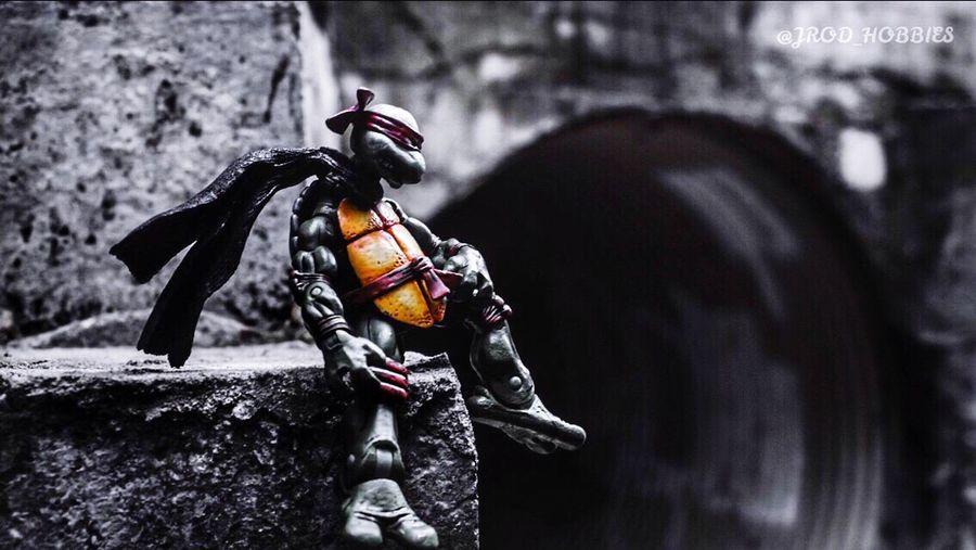 Agameoftones Toyartistry EyeEmBestPics Sony Alpha EyeEm Best Shots Tmnt Teenage Mutant Ninja Turtles  Black And White Baw